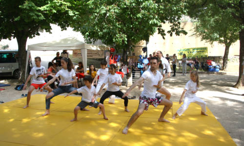 web Huv karate