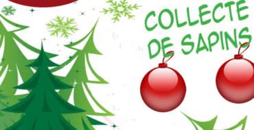 <span style='color:#8B1434;font-size:12px;'>Du 2 au 27 janvier 2019</span><br> Collecte des Sapins