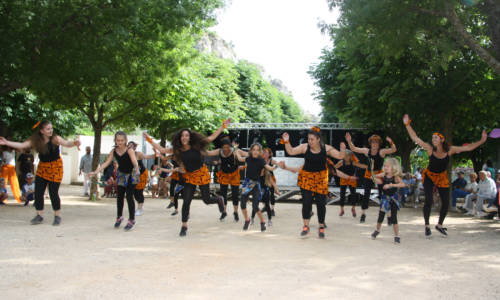 web Huv danse africaine 1